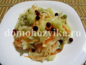 salat-iz-kvashenoj-kapusty_6