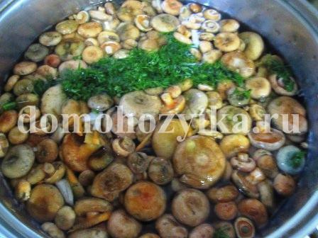 грибной суп с рыжиками рецепт