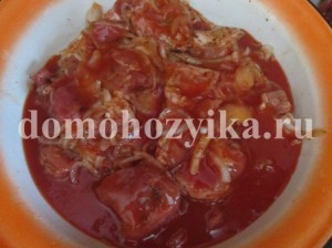 shashlyk-v-tomatnom-soke_6