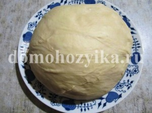 drozhzhevoe-testo-v-xlebopechke-prostoe_9