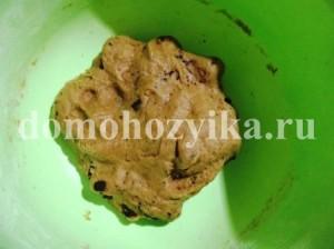 pechene-s-shokoladom_9