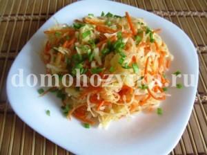 salat-iz-svezhej-kapusty-vitaminka_6