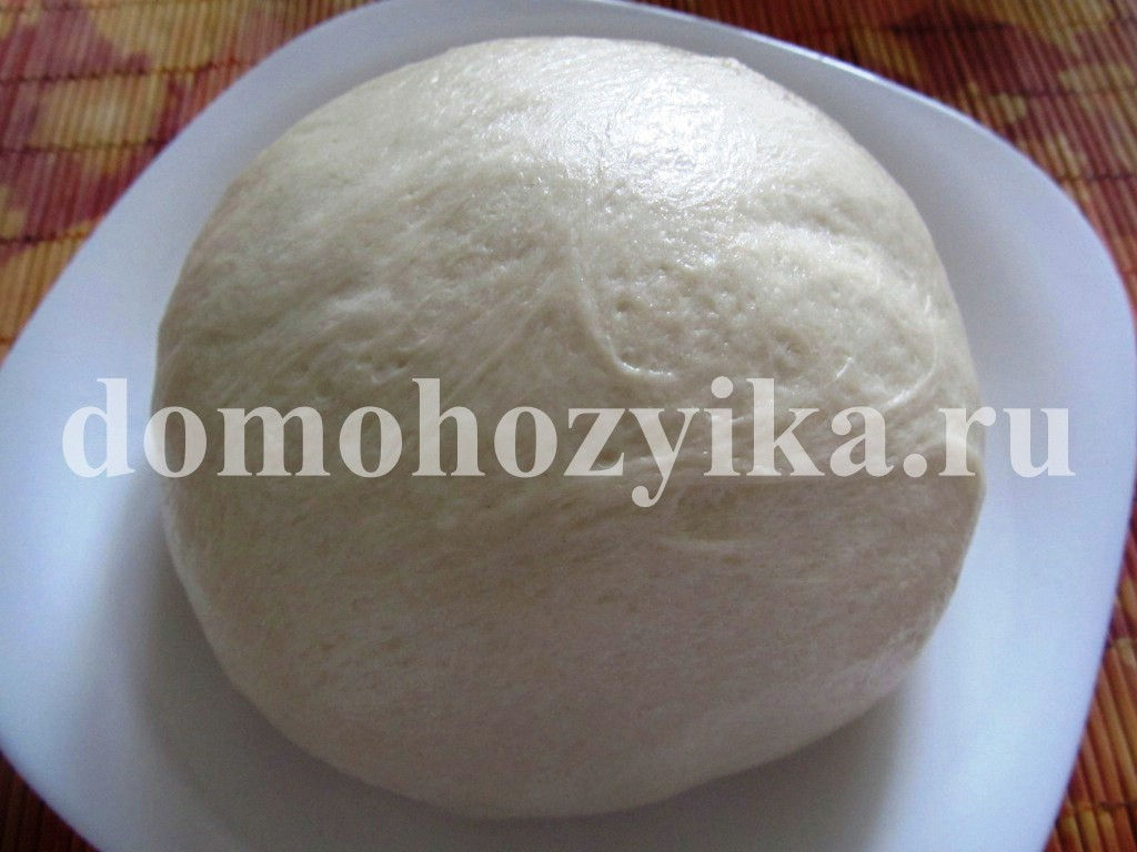 рецепт теста для пиццы с дрожжами на молоке пошагово с фото