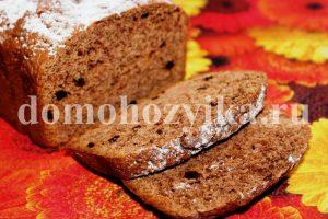 shokoladnyj-keks-s-izyumom_1