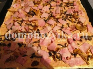 picca-s-gribami-i-pomidorami_7
