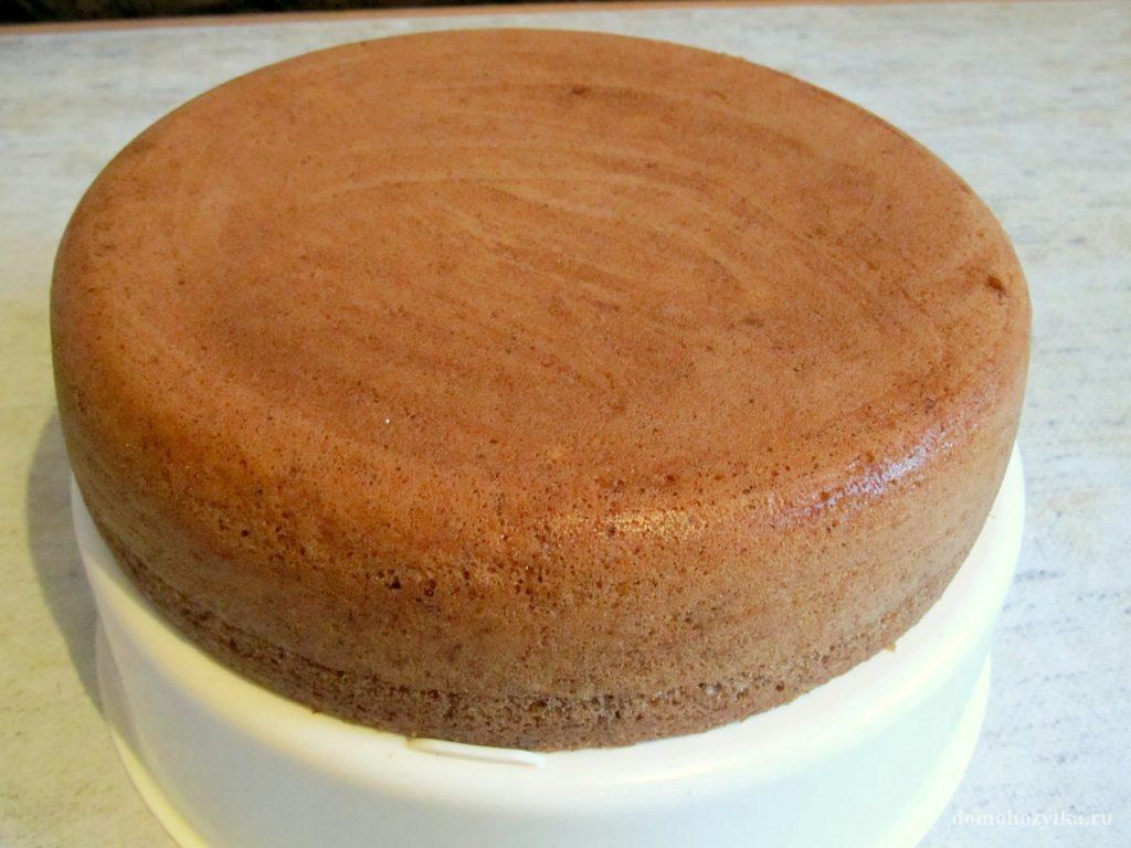 сметанный торт черносливом рецепт с фото